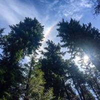 Georgina Dan shines her lens and reveals a rainbow