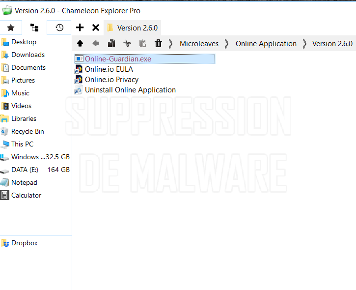 Application (32 bit) virus