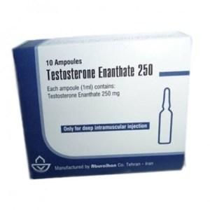 Testosterone-enanthate-250-Aburaihan-1