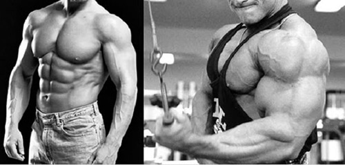 deca-muscles-nandrolone