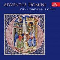Schola Gregoriana Pragensis – Adventus Domini. Adventní mše Rorate v českých kancionálech 15.- 16. století CD