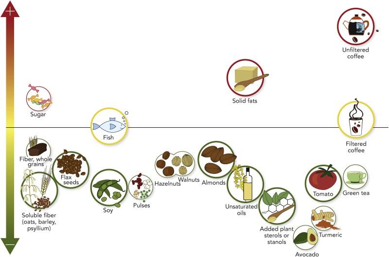 Χοληστερόλη, Χοληστερίνη, LDL, LDL-c, Υγεία, Διατροφή, Καρδιά, Αθηροσκλήρωση