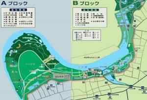 017-31annaizu1200