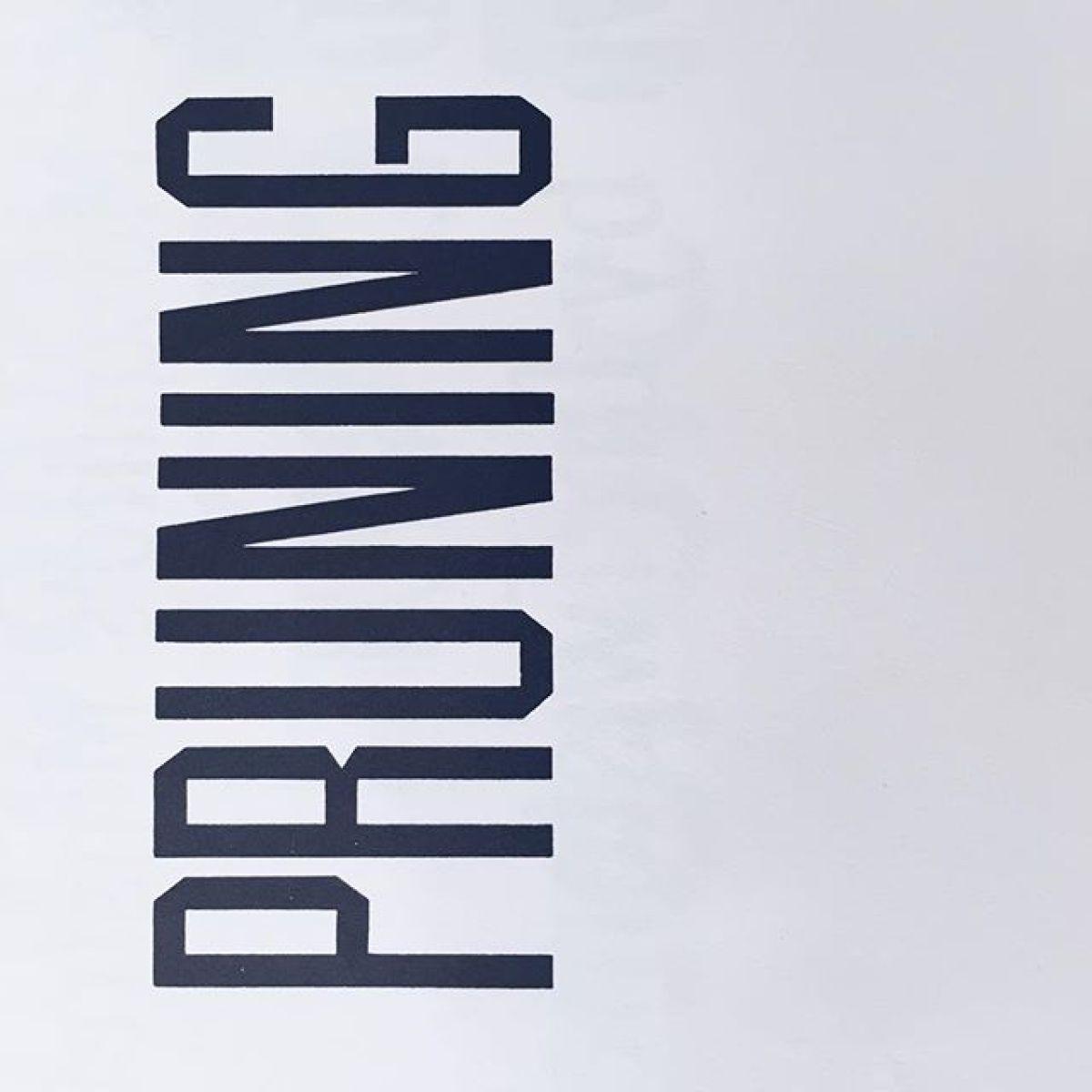 Work In Progress — Colour and Type.Branding.#graphics #design #agencylife #graphicdesigner #graphicdesign  #designer #graphicdesign #art #artdirection #grafik #Branding #brandingagency #Brand #colour #paper #blue #pink #print #typography #type #typeface #typespecimen #font #vintage #logo