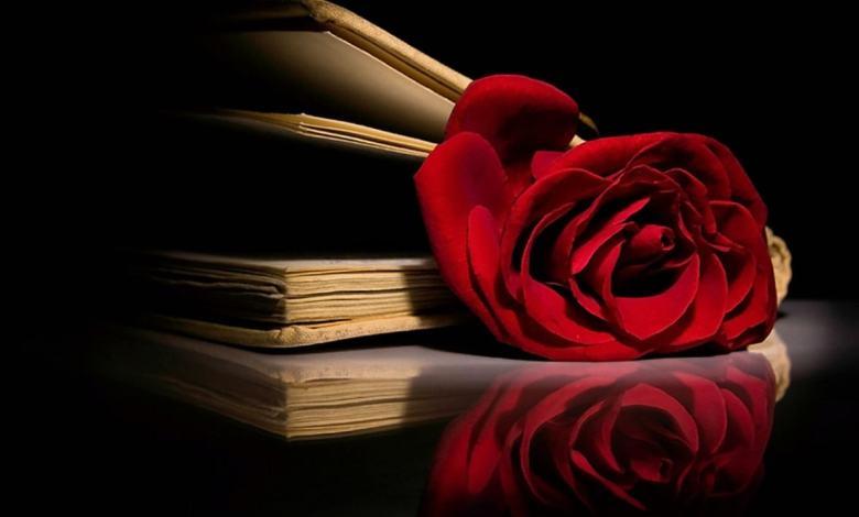 Photo of O Nome da Rosa: Enredo e Significado da obra de Umberto Eco – Luigi Angelino