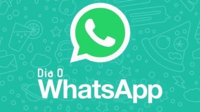 Falha no WhatsApp Dia 0