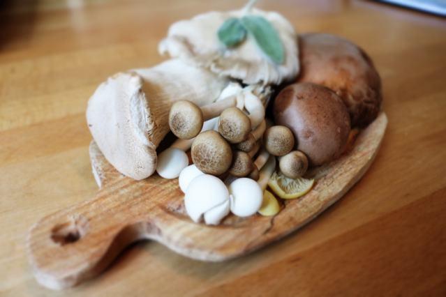 Cogumelos medicinais: 4 benefícios apoiados pela ciência