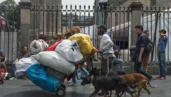 Un pepenador camina con sus perros frente a la Catedral Metropólitana. Pese a la disminución del desempleo, el trabajo informal continuó a la alza durante el primer trimestre del año, de acuerdo con el Instituto Nacional de Estadística y Geografía (Inegi). FOTO: SELENE PACHECO /CUARTOSCURO.COM