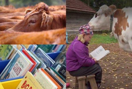 Tips Membaca Buku Cepat
