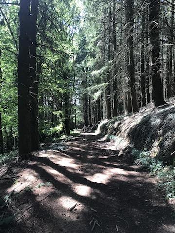 Beau chemin