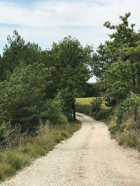 Cahors -Lascabanes - Chemin blanc du Quercy