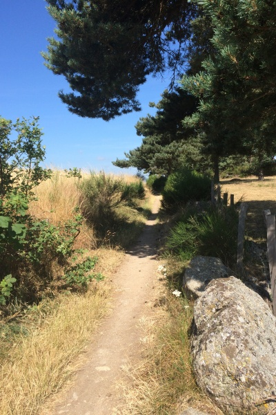 chemin vers Saugues