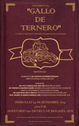 Documental Gallo de Ternero