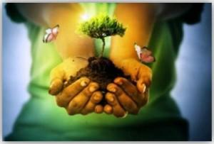 Vivir bien con la Madre Tierra2