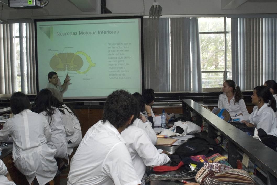UCR: Peligra calidad de la formación médica en el país | Surcos