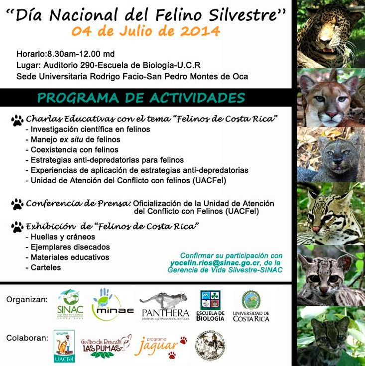 Dia Nacional de los Felinos en Costa Rica3