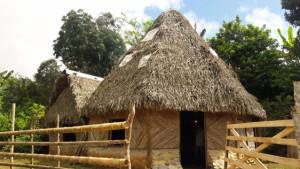 Estrenan en los territorios indigenas de Boruca y Terraba el documental Guardianes del Bosque5