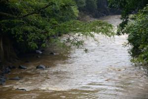 UCR Los beneficios ocultos de las inundaciones