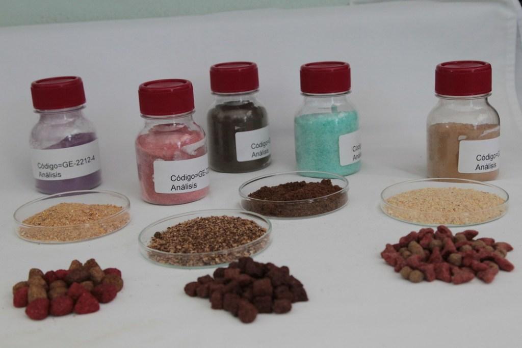 laboratorio, CINA; Centro de Investigaciones en Nutrición Animal, bacterias. tubos de ensayo,