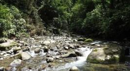 """Las Asadas abastecen al 53% de la población de la región de Occidente, según los datos presentados en la publicación """"El agua en la región de Occidente de Costa Rica: un balance de la situación""""."""