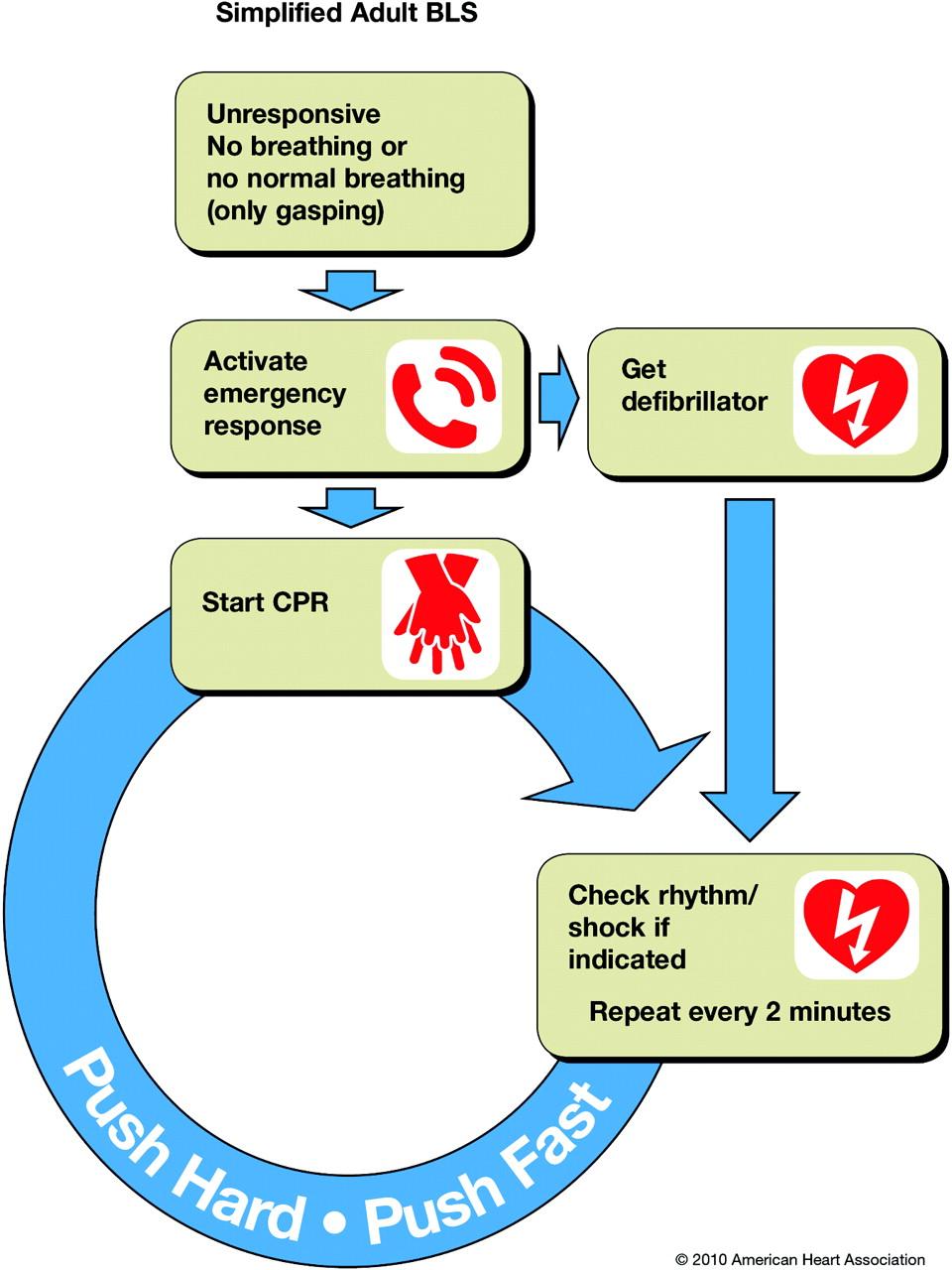 BLS CPR Updates!   SureFire CPR