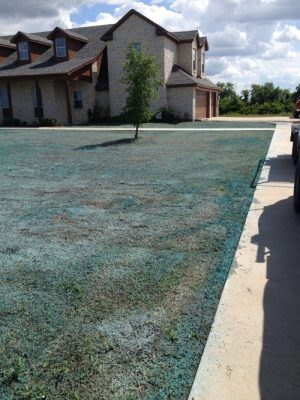 Lawn Startup