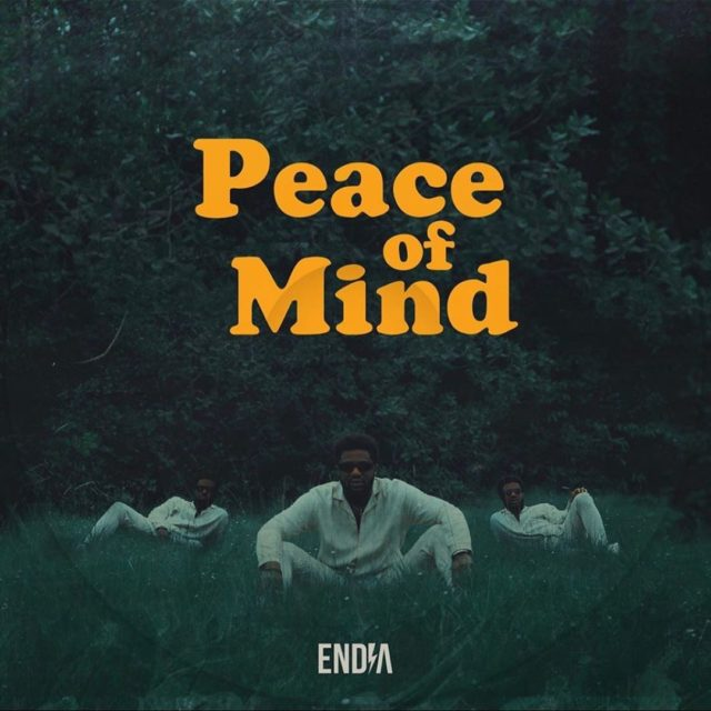 DOWNLOAD Endia – Peace Of Mind Album