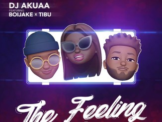 DJ Akuaa – The Feeling Ft. BoiJake & Tibu
