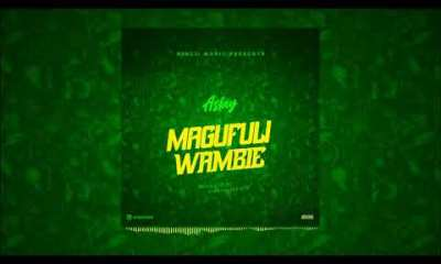Aslay – Magufuli Wambie » SureLoaded