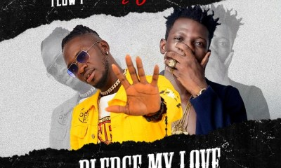 Terry Apala x Flow P – Pledge My Love