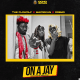 The Flowolf Ft. Dremo & Mayorkun – On A Jay