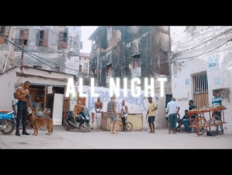 Harmonize Ft Anjella - All Night (Official Music Video)