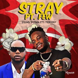 Ding Dong – Stray Pt. Few Ft Teejay