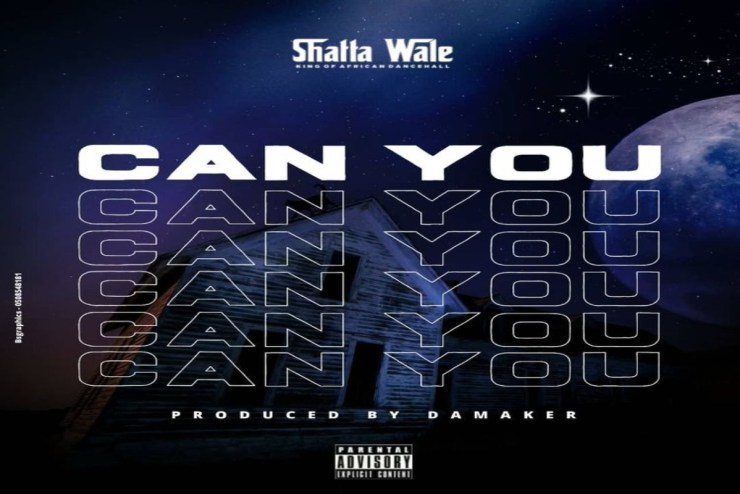 Shatta Wale – Can You