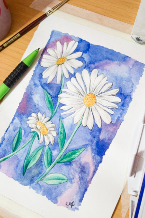 paint watercolour draw watercolor painting daisy easy gouache drawing simple paintings water flowers beginners watercolors surelysimple step things tutorial techniques