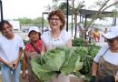 Los huertos urbanos del Ayuntamiento de Mérida rinden buenos frutos en la salud y la calidad de vida de los meridanos