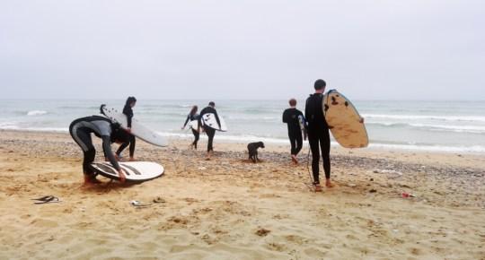 Серферы с досками | Школа серфинга Surf-Burg