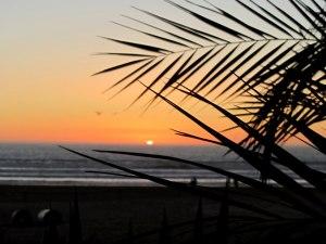 Закат и пальмы | Школа серфинга в Марокко Surf-Burg
