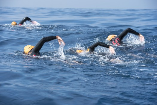 Open water swimming with The Surf Swim School around the North Devon coast, especially Westward Ho!