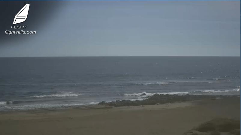 Godzilla Webcam