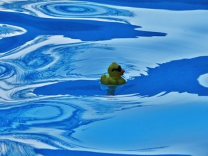 Rubber Ducky at Santa Cruz Pool Job