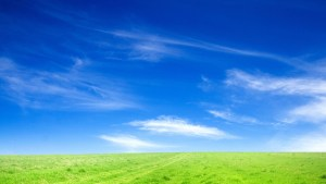 4172469-blue-sky-and-green-grass