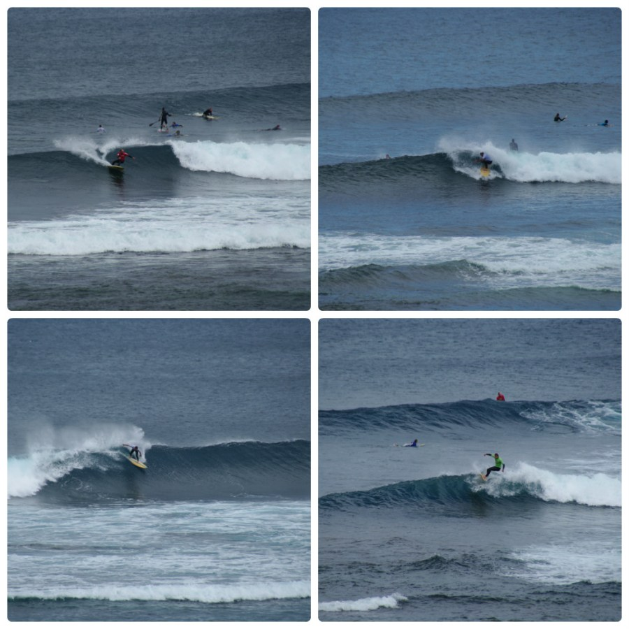 2015 Single Fin Theory surfing 2 collage_photocat