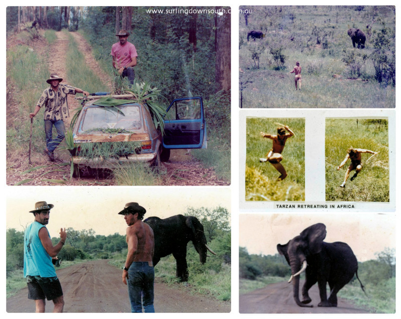 1984 South Africa elephant hunt Rich & Craig collage_photocat