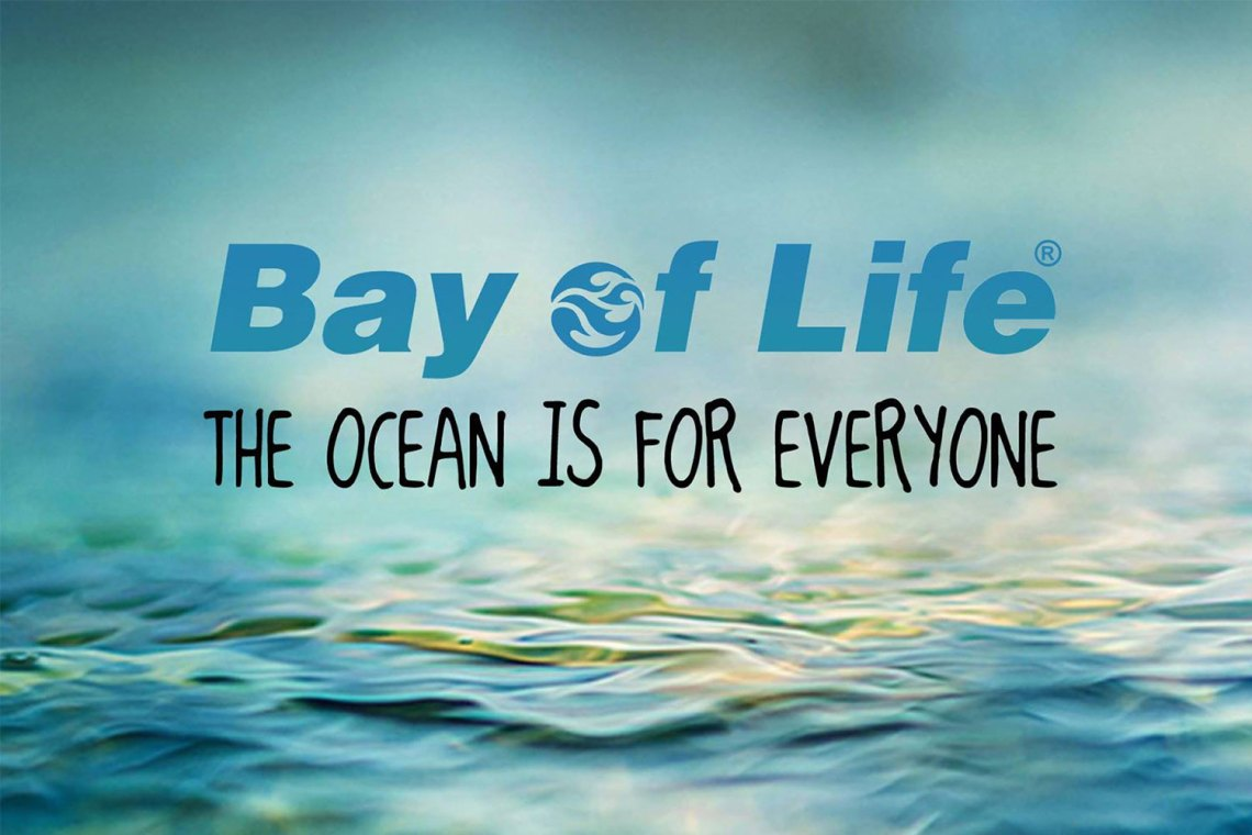 Picture of Bay of Life Surf School