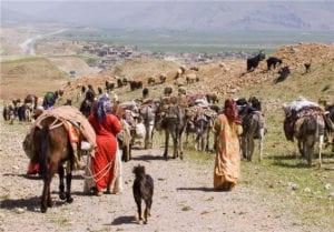 Nomads in Koohrang