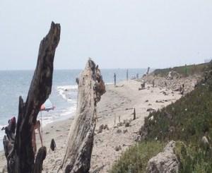 hammonds-beach