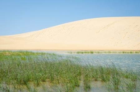 Jockey's Ridge State Park Sand Dunes