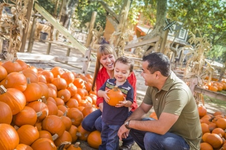 family at a pumpkin patch
