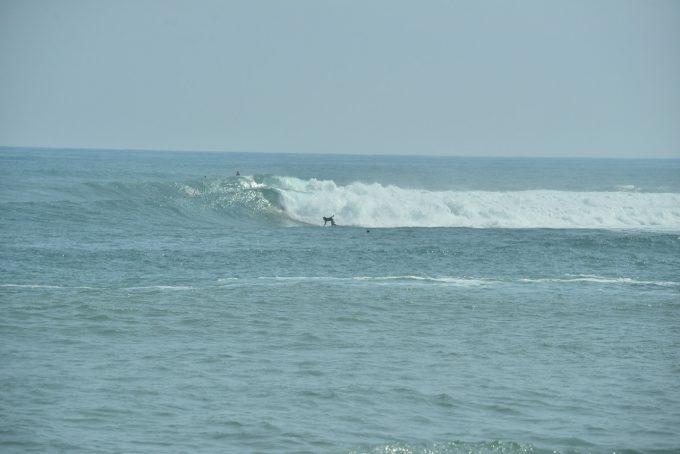 台風22号種子島サーフトリップ